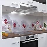 One-Wheel | selbstklebende Küchenrückwand | 220x60 cm harte PVC Folie | Wandtattoo für Fliesenspiegel Design Blumen Weiss | Motiv: Orchidee