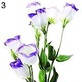 yanbirdfx Grünpflanzen, 50 Stück Garten Balkon Pflanze Eustoma Blume Lisianthus Samen Home Pflanze Ornament – 3
