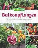 Balkonpflanzen: Pflanzenporträts und kreative Gestaltungsideen