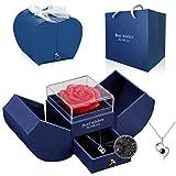 Rose Flower Geschenk, Vatertag Valentinstag Geschenkbox, Handgemachte Ewige Rose mit Halskette aus 925er Sterlingsilber Geeignet für Geburtstag, Hochzeitstag ,Lieblings Person