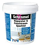 SchimmelX Reparatur- & Feuchtraum-Spachtel 1 Kg