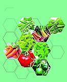 725 Heirloom Gemüsesamen-Starter-Kit Enthält 8 Sorten, Einschließlich Salat-Koriander-Paprika-Spinat-Tomaten Usw. Kann Für Bio-Gemüsesamen-Pack Zum Pflanzen Des Hausgartens Verwendet Werden