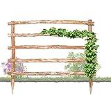 Natürliche Rankhilfe aus Holz in 33 verschiedenen Größen für Ihre Kletterpflanzen Höhe 180 x Breite 120 cm