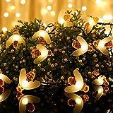 Lichterkette Solar Aussen, Vegena Warmweiß LED Solarlichterkette Außen Bienen 7M 50 LEDs 8 Modi IP65 Wasserdicht für Garten Bäume Terrasse Hof Haus Weihnachten Party Deko Energieklasse A+++