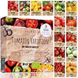 BIO Tomaten Samen Set - 14 Sorten Tomatensamen aus biologischem Anbau, samenfestes Tomaten Saatgut, Bio Tomatensamen Set für Küche, Balkon und Garten, 14er Pflanzensamen Set