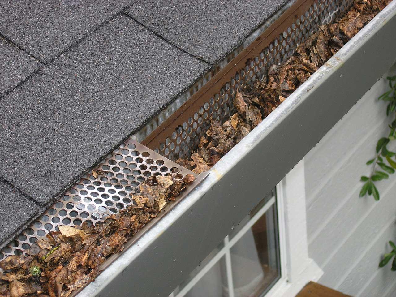 laubschutzgitter regenrinne - laubschutz für dachrinne und fallrohr