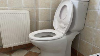 WC-Sitz mit Kindersitz integriert