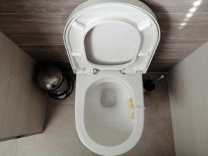 WC-Sitz wechseln