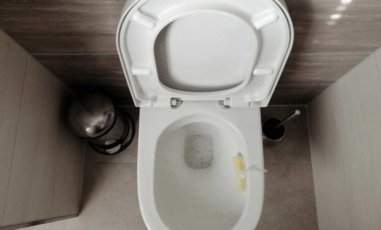 Bild von WC-Sitz wechseln