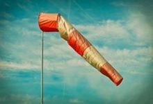 Bild von Windschutzzaun selber bauen – Anleitung und Tipps