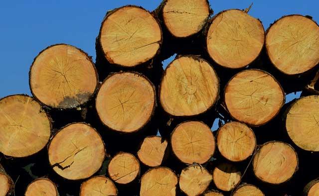 Abdeckpläne für Brennholz - So finden Sie nun die richtige Plane
