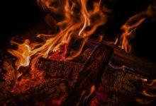 Brennholz-Einkauf im Sommer - So machen Sie ein richtiges Schnäppchen