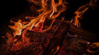 Photo of Warum der Brennholz-Einkauf im Sommer immer am günstigsten ist