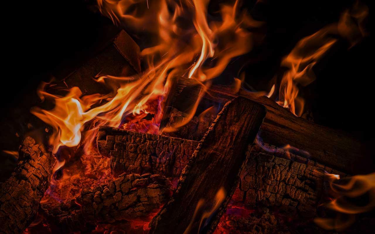 Warum der Brennholz-Einkauf im Sommer immer am günstigsten ist