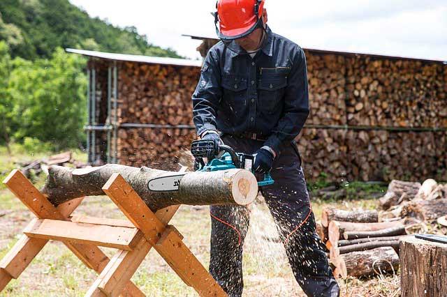 Brennholz richtig sägen - Sicherheit und Ausrüstung