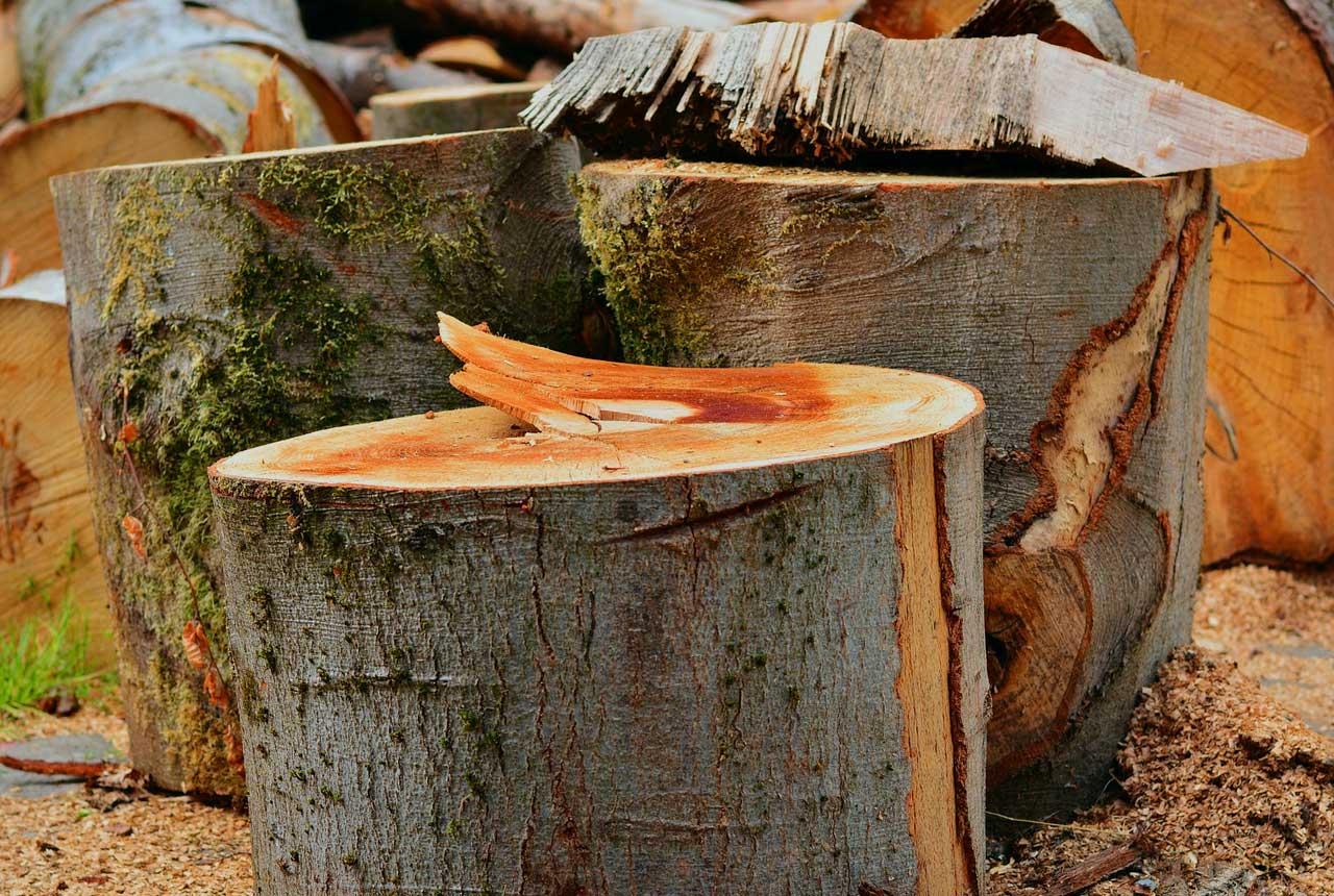 Brennholz richtig sägen und spalten