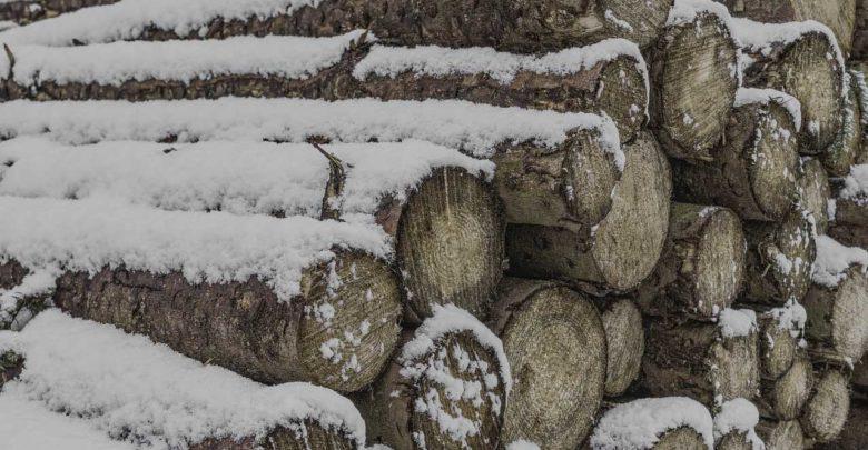 Brennholzfeuchte - Wie kann man es messen?