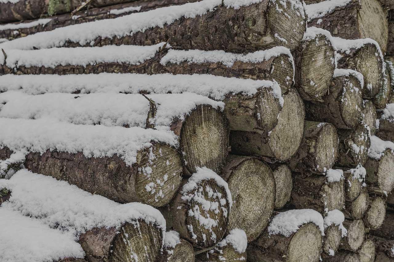 Brennholzfeuchte messen mit einem Holzfeuchtemessgerät