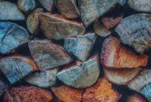 Brennholzsorten