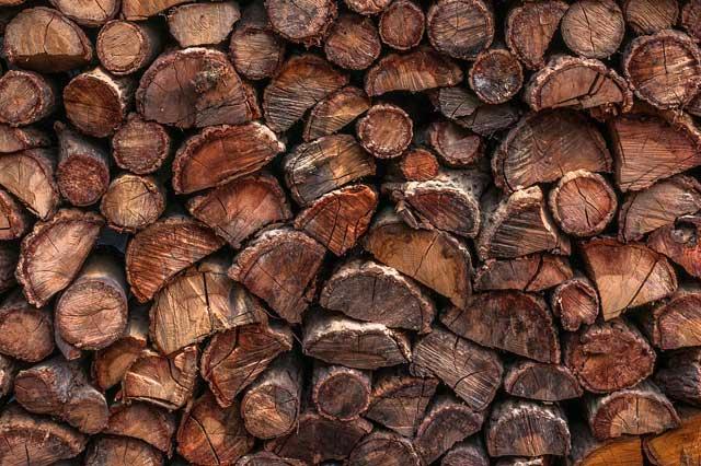 Buchenbrennholz - Der Favorit unter den Hölzern