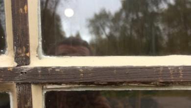 Bild von Fensterkitt – Fenster wieder dicht bekommen
