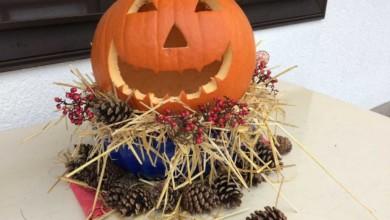 Photo of Halloween Kürbisse haltbar machen