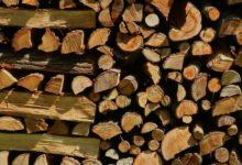 Maximale Lagerzeit von Brennholz