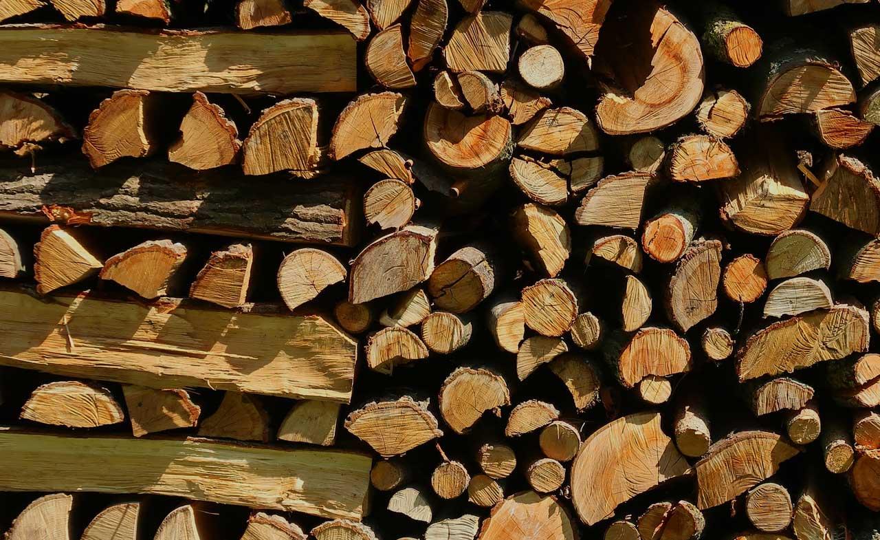 Maximale Lagerzeit Von Brennholz Die Richtige Lagerung