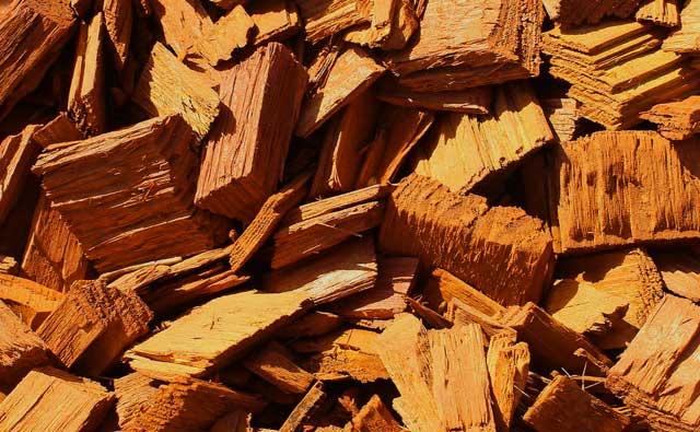 Preisentwicklung von Brennholz - Was lässt den Preis so ansteigen?
