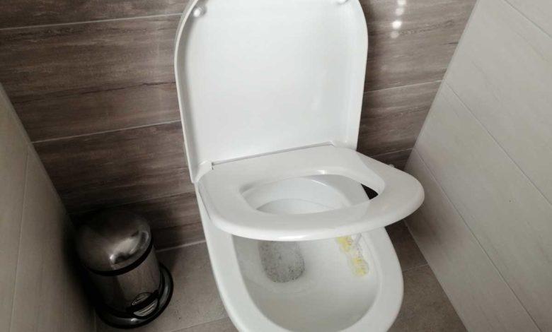 Richtigen WC-Sitz finden