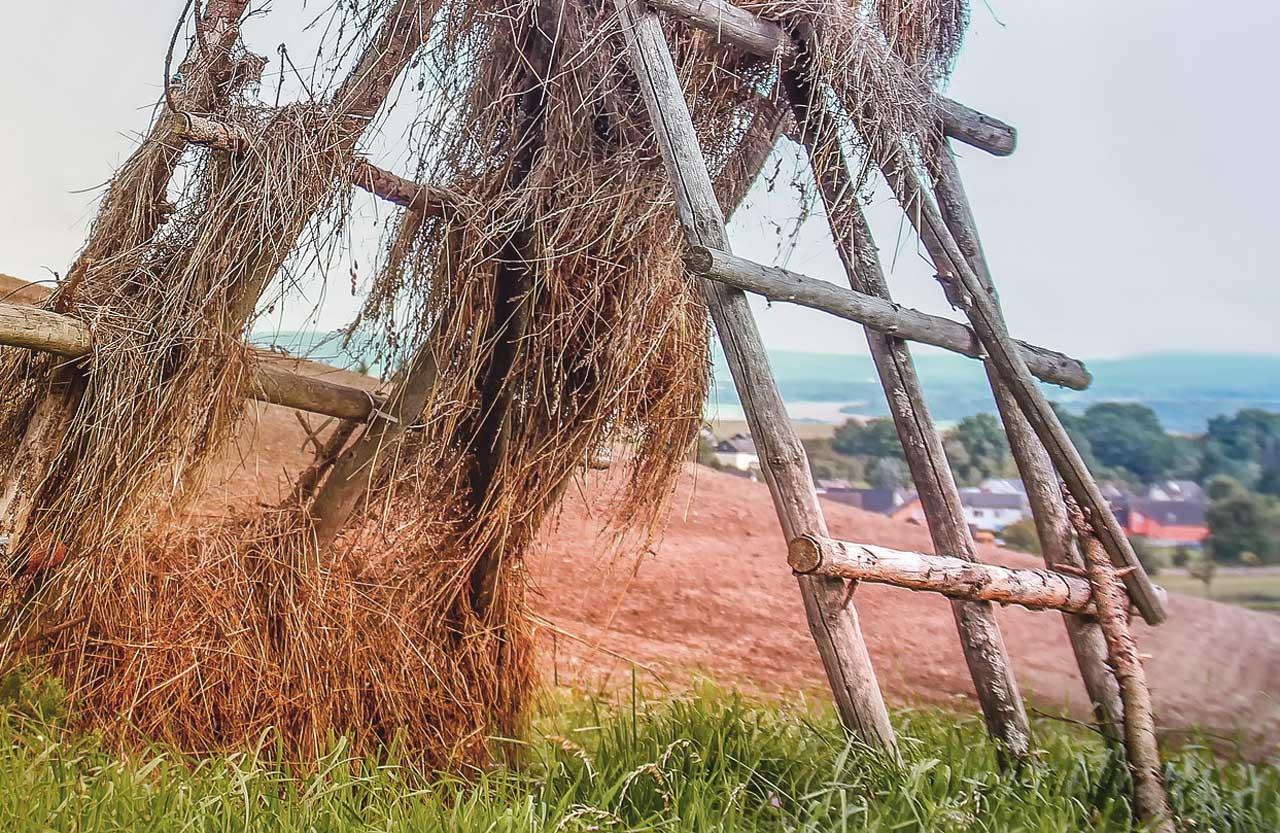 Berühmt Sägebock bauen - Anleitung und Tipps für eine schnellen Bau @GS_43