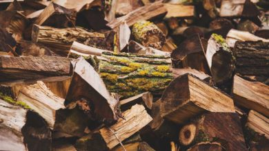 Photo of Stammholz, Scheitholz oder Stückholz für den Kamin?