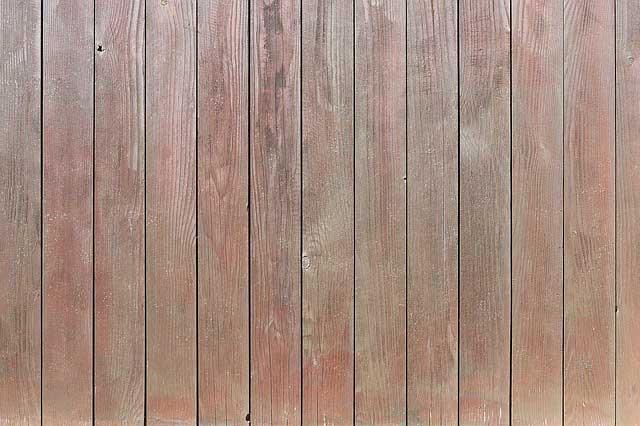Spezifisches Gewicht von Holz bestimmen - So gelingt es Ihnen richtig