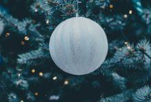 Bild von Den Weihnachtsbaum fachgerecht entsorgen