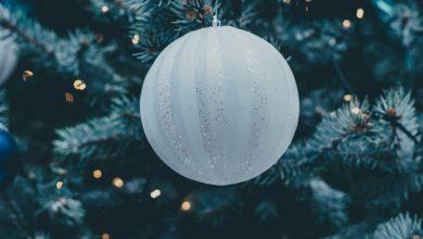 Weihnachtsbaum entsorgen - fachgerecht und legal