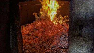 Photo of Welcher Ofen ist der richtige für Sie?
