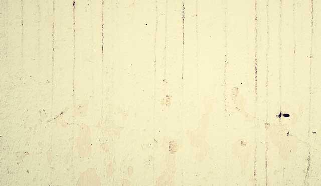 Wie beseitige ich Schimmel an der Wand, wenn es schon in den Putz eingedrungen ist?