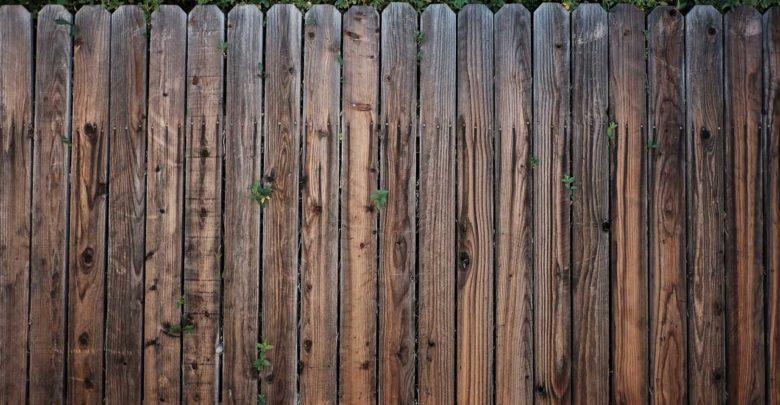 Zaun Sichtschutz für Maschendraht oder Holz - Ratgeber