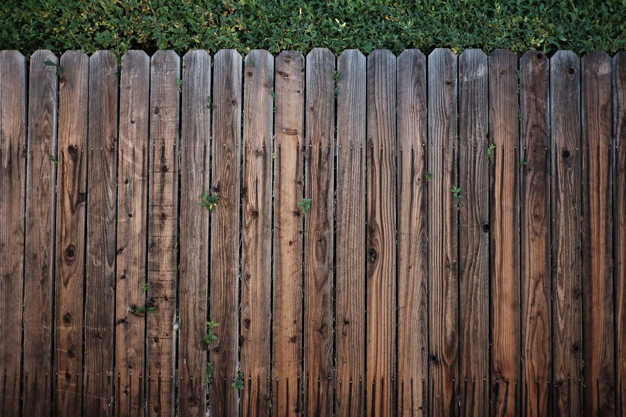 Zaun Sichtschutz Fur Maschendraht Oder Holz Ratgeber